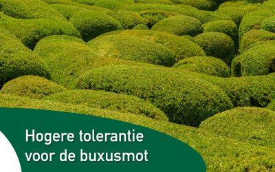 Buxussoorten die minder gevoelig zijn voor de buxusmot